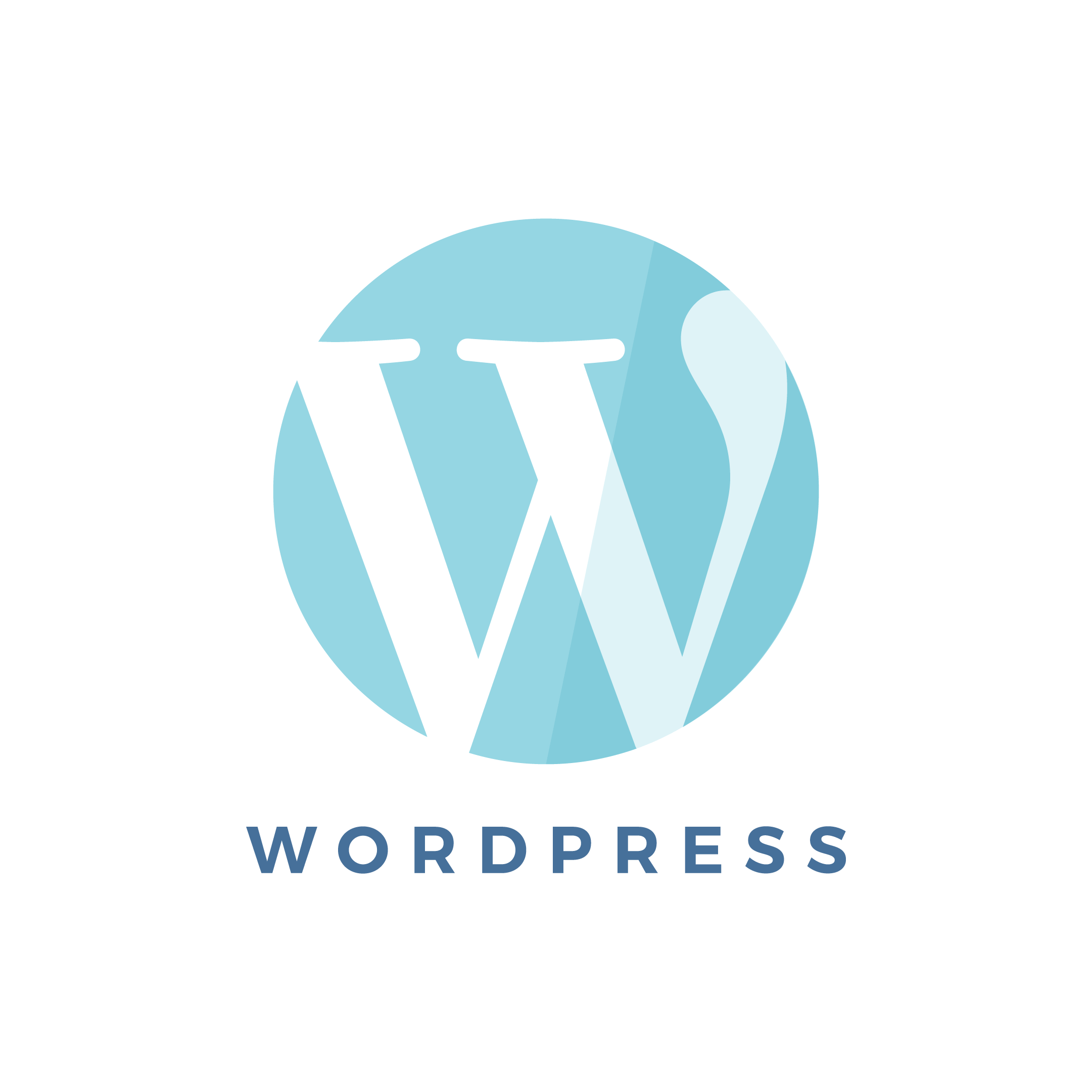 Blue vector illustration representing the WordPress website design in flat design style