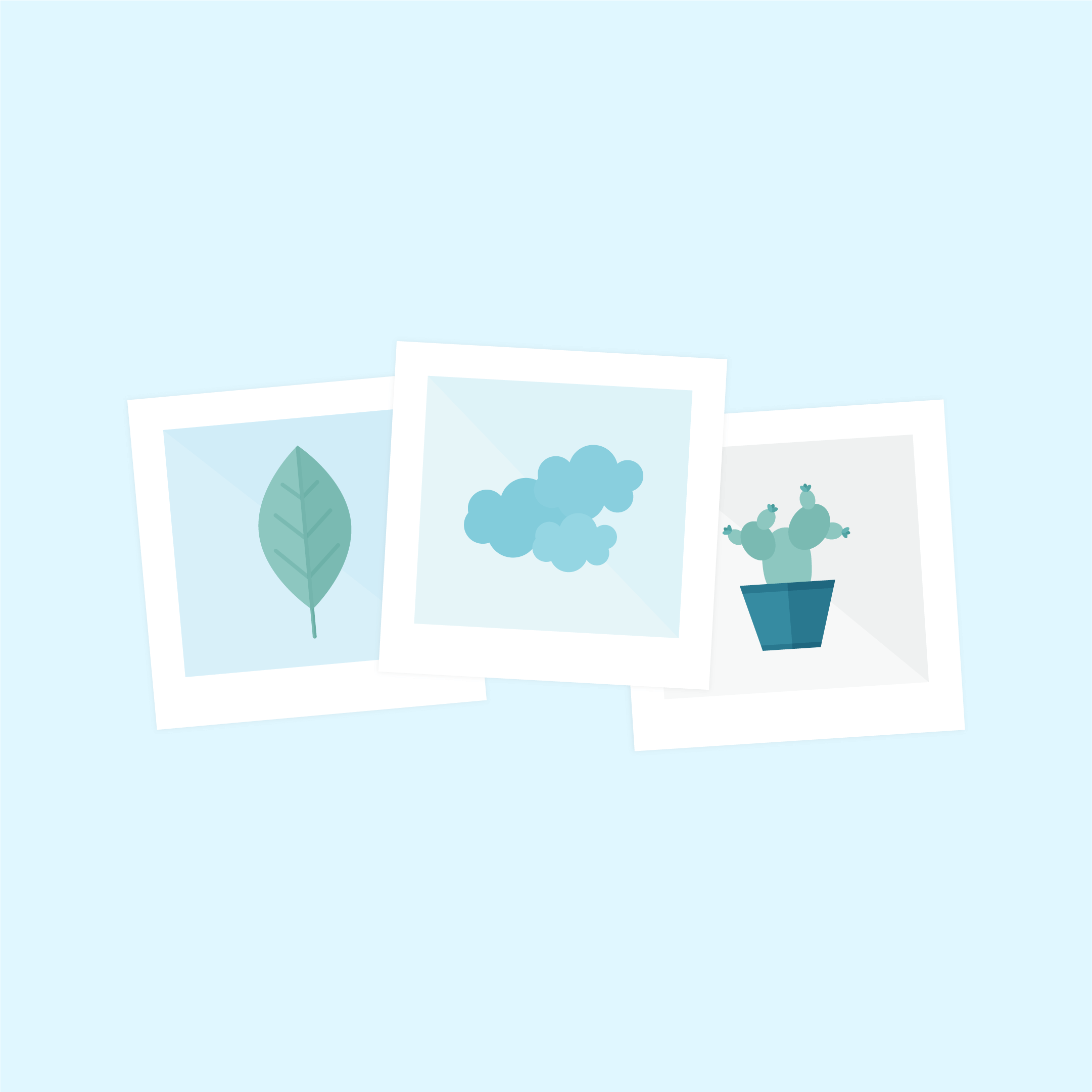 Vector illustration of three polaroid photos: leaf, clouds & cactus in flat design style