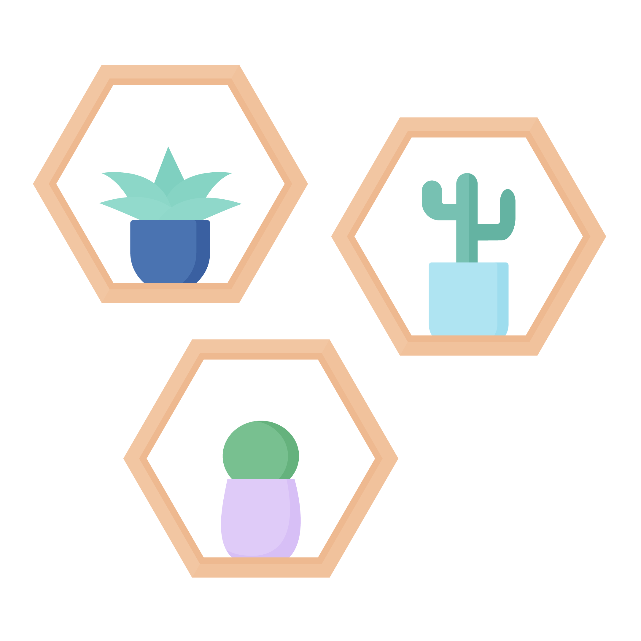 Vector illustration of three wooden hexagon shelves with cactus in flat design style