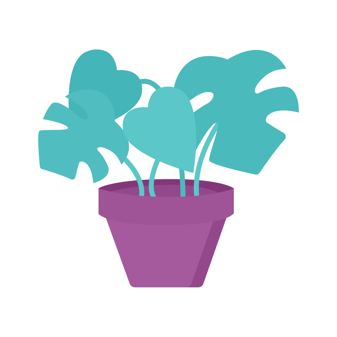 Vector illustration of a Monstera Deliciosa - Swiss Cheese Plant in flat design style