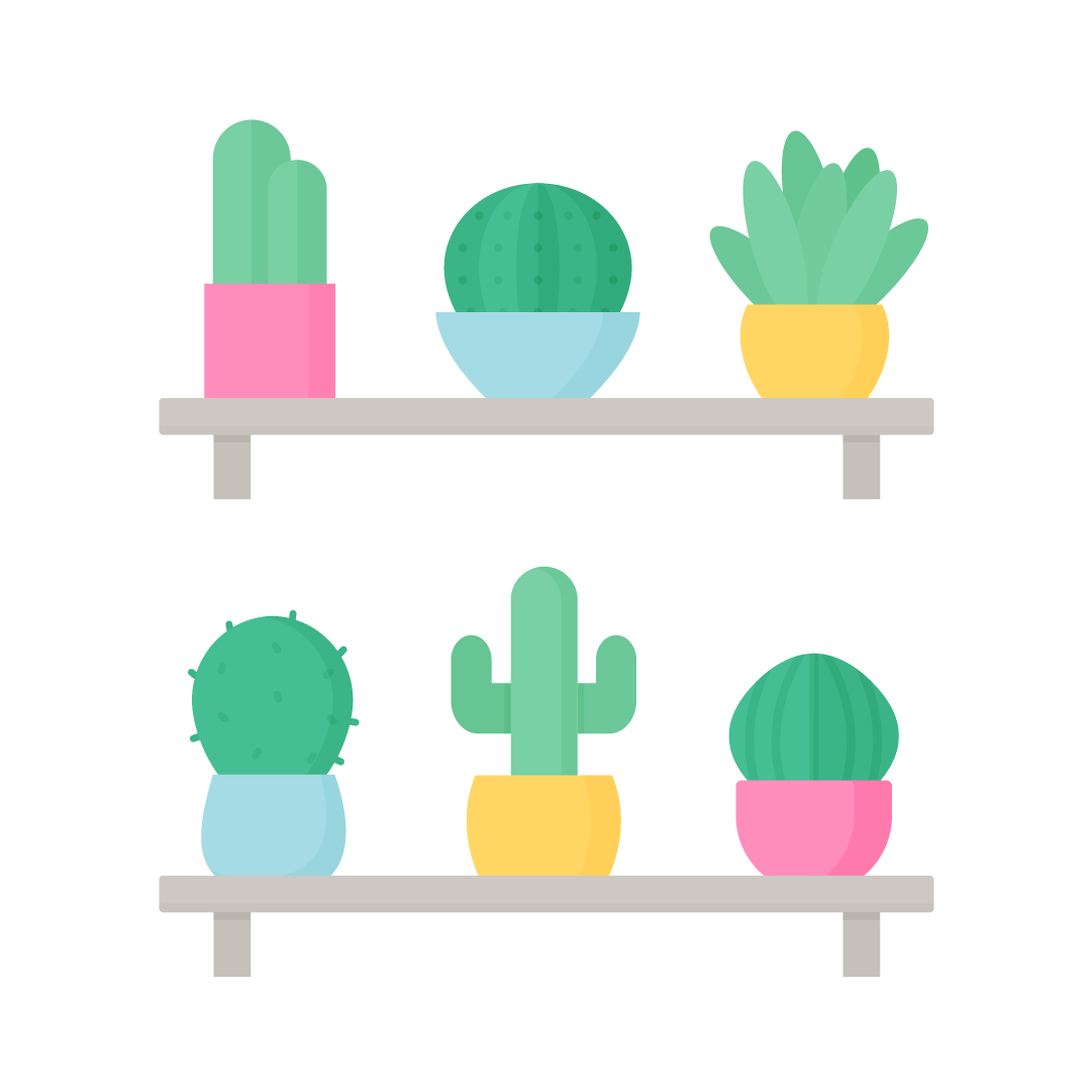Vector illustration of various cactus on shelves in flat design style