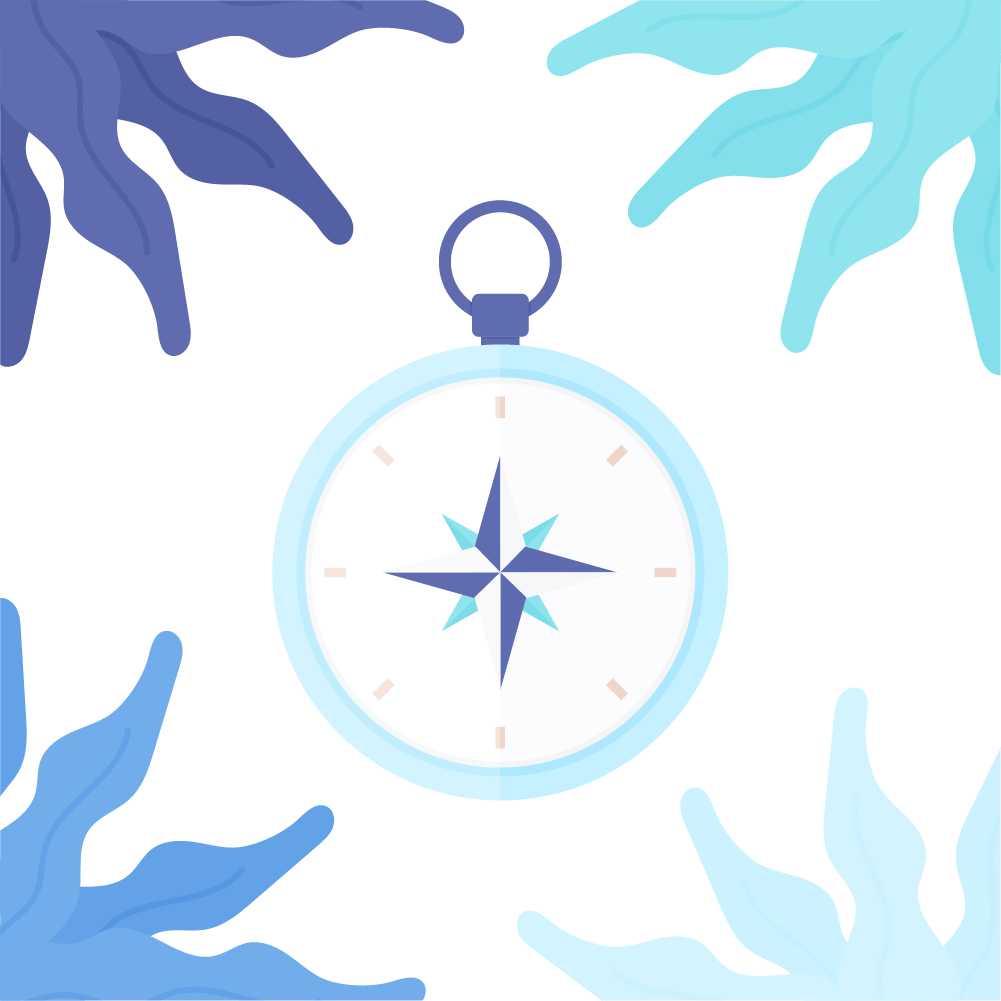 Flat illustration of a compass rose with seaweed frame
