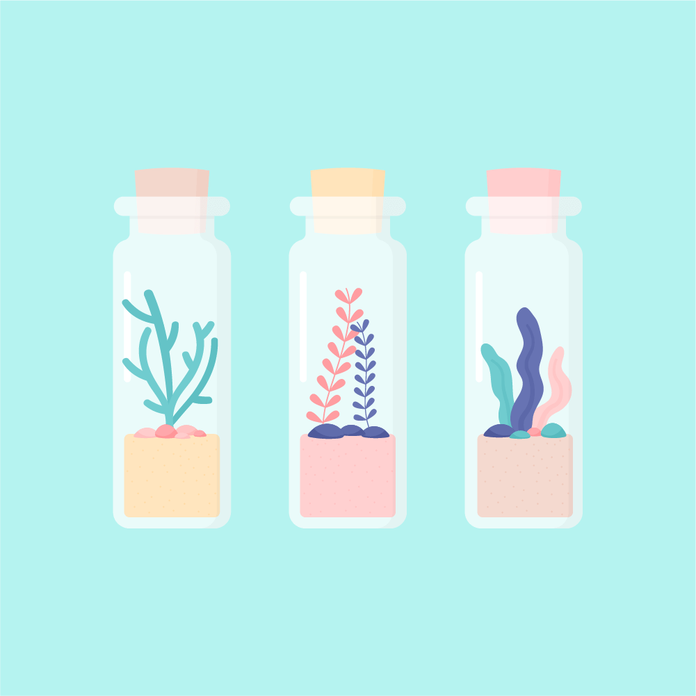 Flat illustration of seaweed in mini glass jars with a cork stopper