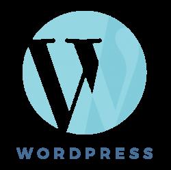 Brand & Website Design - WordPress - aqua blue -MintSwift